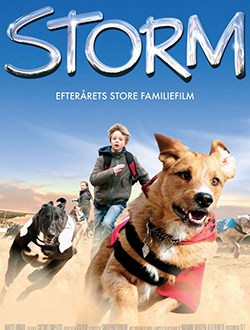 2009-storm