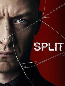 2017-split